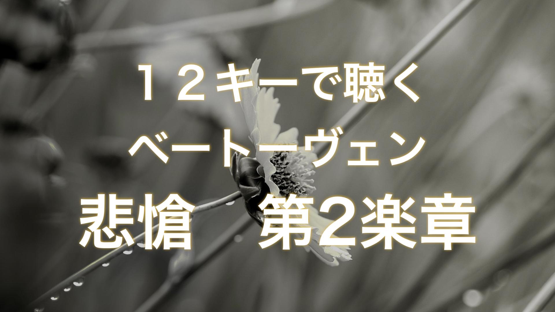 相対音感トレーニング【ベートーヴェン 悲愴第2楽章】