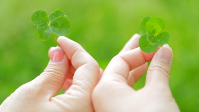 即実践可能!幸福を引き寄せる3つの習慣