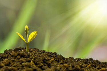 自己成長を加速させたければルーチン化が一番